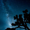 Milky Way Joshua Tree, California