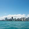 Happy 305 Day, Miami!