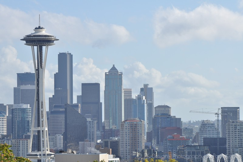 This park is an amazing place to take pictures of Seattle, but it's very skewed in its viewpoint. It makes it seem like the Space Needle is the tallest building there is, when in fact it is HALF the height of the building immediately down and to the right in this picture.