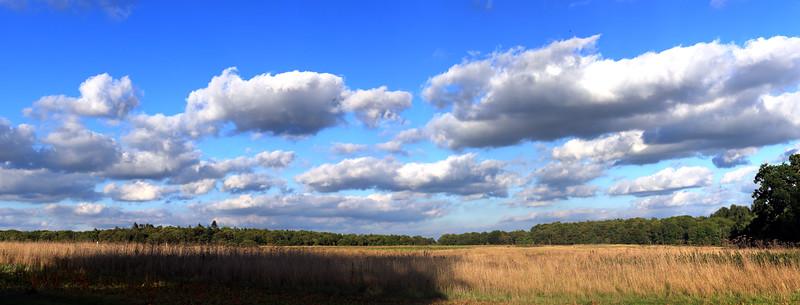 Norfolk Skys