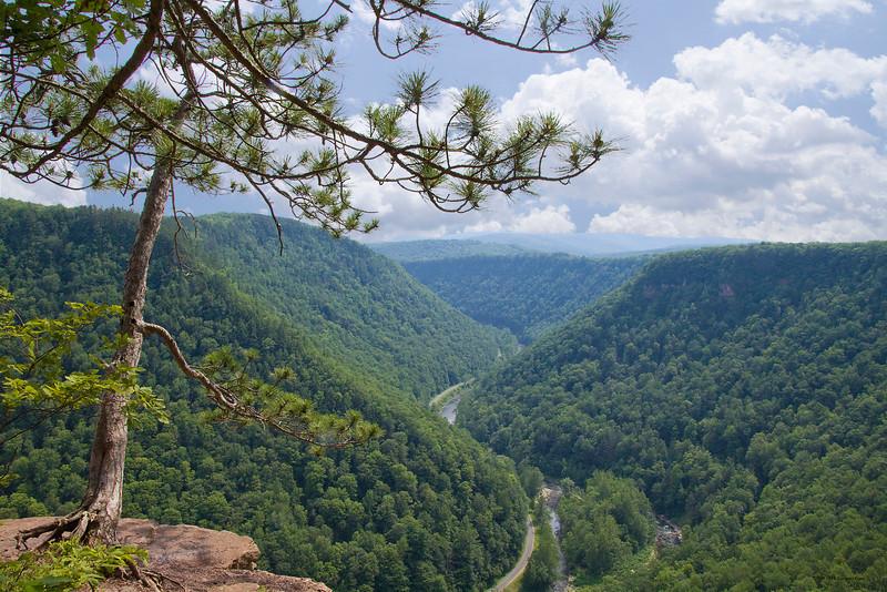 """""""Summit"""" PA Grand Canyon, Potter County"""