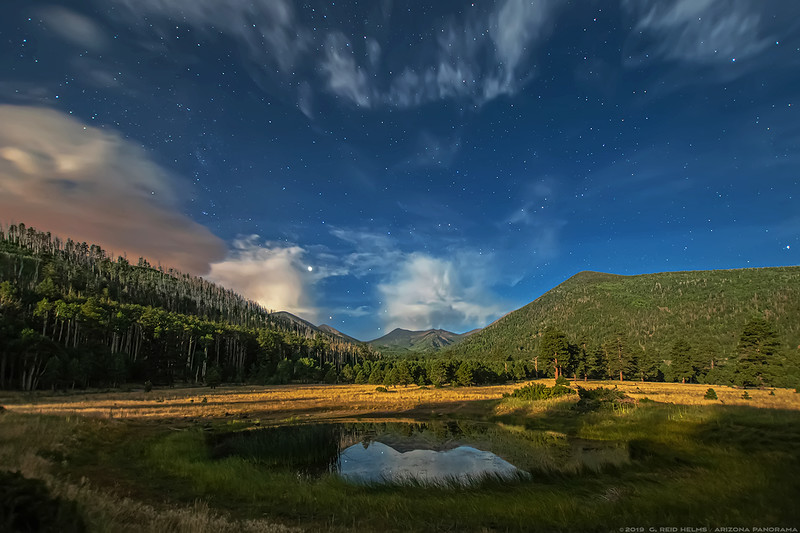Lockett Meadow by moon light