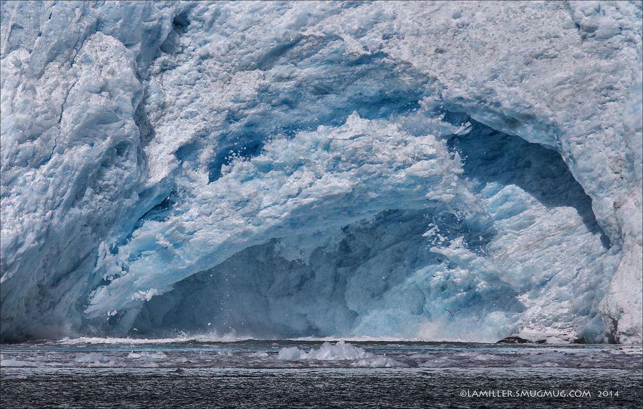 Calving Northwestern Glacier - Kenia Fjords National Park