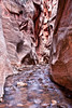 Kanarra Creek Narrows I<br /> <br /> Entering the first set of narrows encountered when trekking up Kanarra Creek. <br /> Kanarraville, Utah, USA