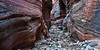 Rock Poetry<br /> <br /> The many colors of the rock in a small slot canyon on the East side of <br /> Zion National Park, Utah, USA