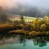 Misty Dawn at Zelenci Springs