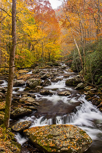 Autumn Cascades Along the Middle Prong II