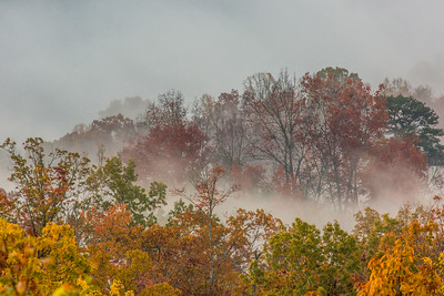 Autumn Fog in the Foothills I