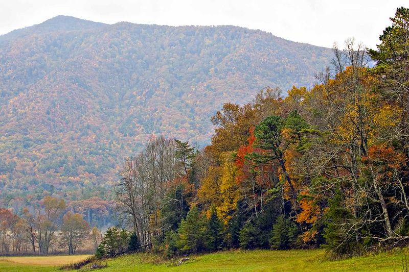 Fall 2005 Cades Cove area