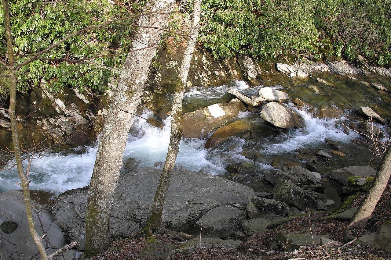 The streams were beautiful