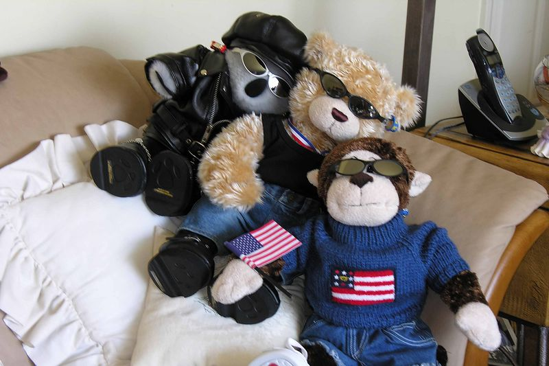 These are Pat's bears with their latest dress-ups