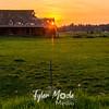 48  G Barn Sunset
