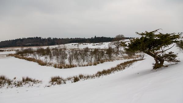 Søen ved Slaggaard Banke