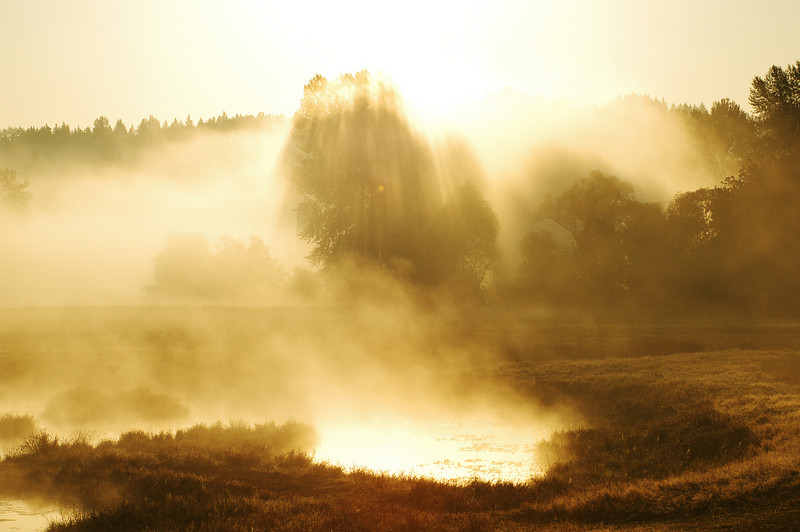 Morning mist on the Snoqualmie River