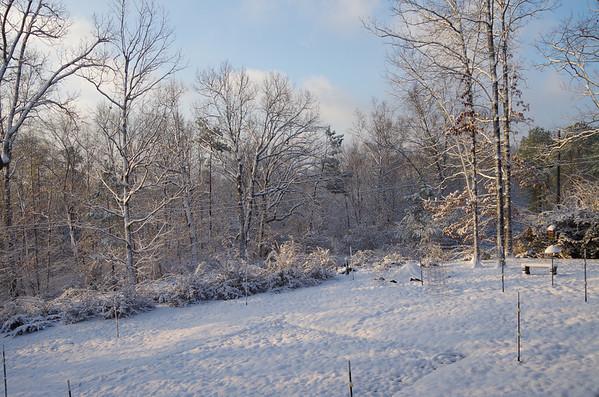 Snow 2 13 2014