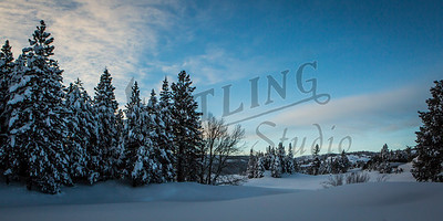 Wentling-8579