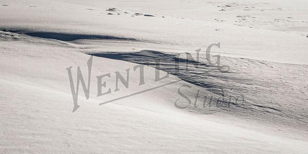 Wentling-8373