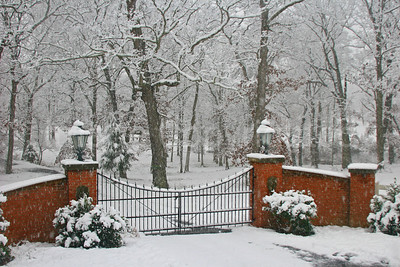 Entry gates in snow - 3/12/10