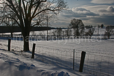Snow at fence line - 12/22/09