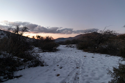 Snow in the Tortolita Mountains