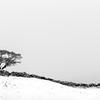 hampsfell snow DSC_5262