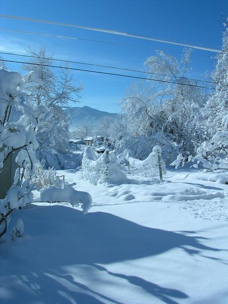 snowday43