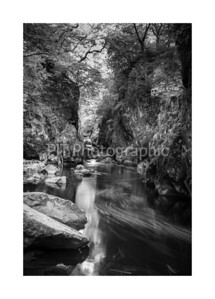 Through the Fairy Glen Black and White