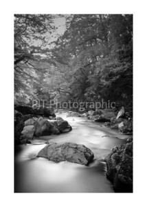 Fairy Glen Black and White