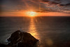 SOUTH STACK SUNFLARE  #4