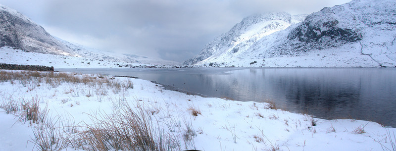 CYM IDWAL IN SNOW  #2