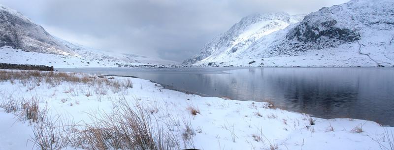 CYM IDWAL IN SNOW  #2