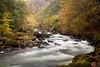 Aberglaslyn Gorge #1