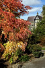 BODNANT EARLY AUTUMN 2010