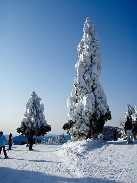 Mizuho - Shimane Prefecture