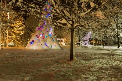 Snowstorm.December.2014