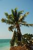 sombrero beach, marathon (8)