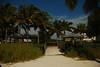 sombrero beach, marathon (6)
