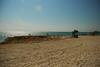 sombrero beach, marathon (16)