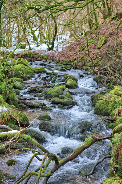 Upstream as the snow melts