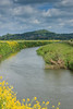 The River Brue winding its way through the Somerset levels past Glastonbury Tor