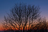 Polden Ridge Sunset