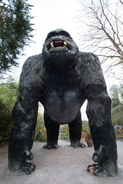As the day comes to an end the statue of a giant gorilla at the entrance of the dinosaur park at Wookey Hole becomes more scary