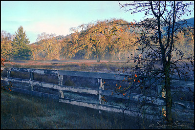 Old fence along Highway 12, near Kenwood