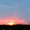 Peoria Arizona Sunset