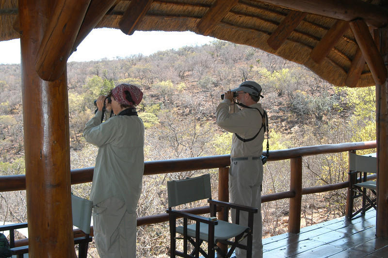 Looking for birds, and other stuff, at Makweti