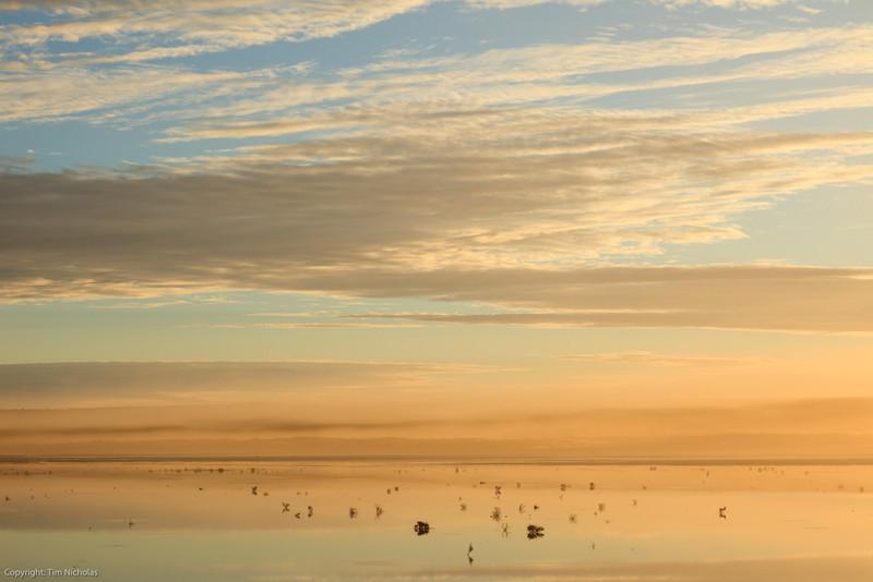Karoo : Kaalpan Salt Pan Sunrise after Rain