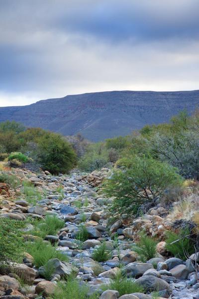Renoster river bed, at Langkloof Campsite. Tankwa Karoo National Park.