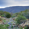 Renoster river bed, at Langkloof Campsite. Tankwa Karoo National Park.