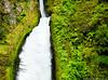 Wahclellah Falls, Oregon