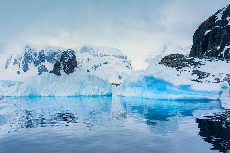A Gateway Into A Winter World -  Cuverville Island, Antarctica